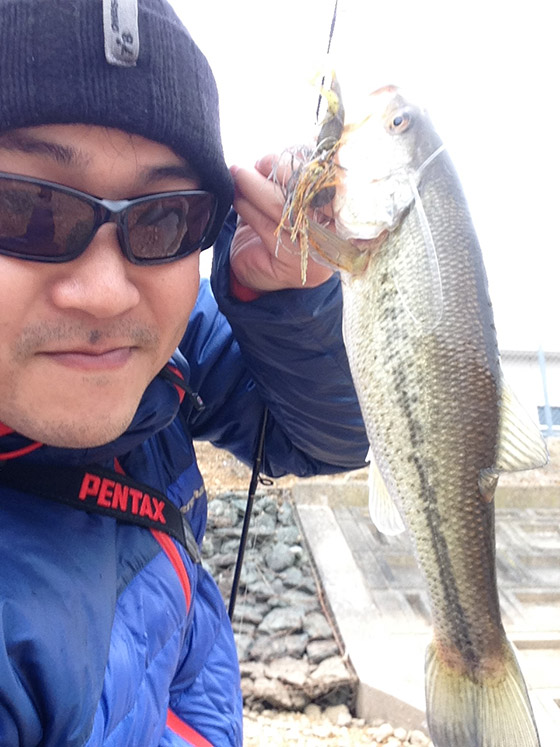 bass201402072